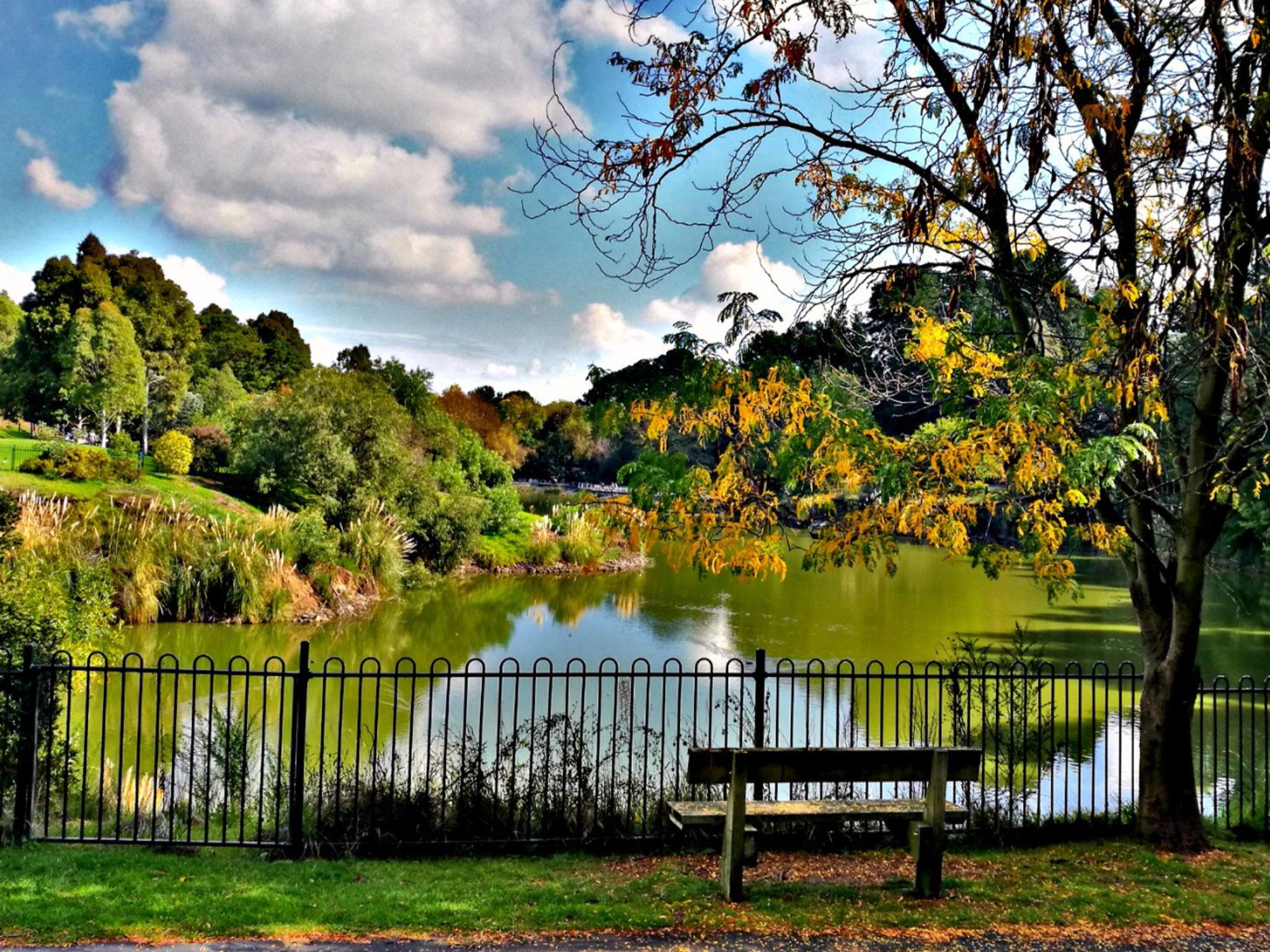Wilson Botanical Park